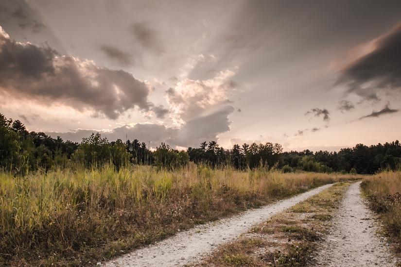 The-Dirt-Road